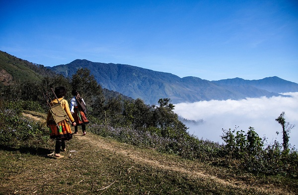 Hai phụ nữ Mông vác gùi vào rừng hái măng