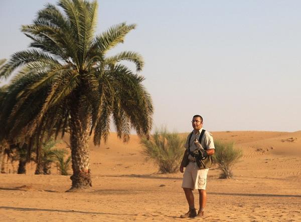 Chim ưng – loài chim đặc trưng của sa mạc, bay nhanh hơn cả ôtô.