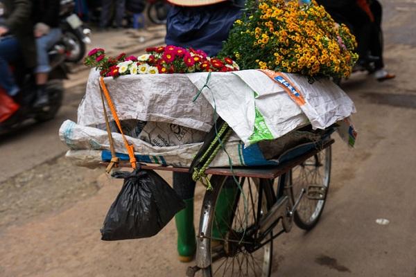 Một phụ nữ bán hoa cúc trên đường phố Hà Nội