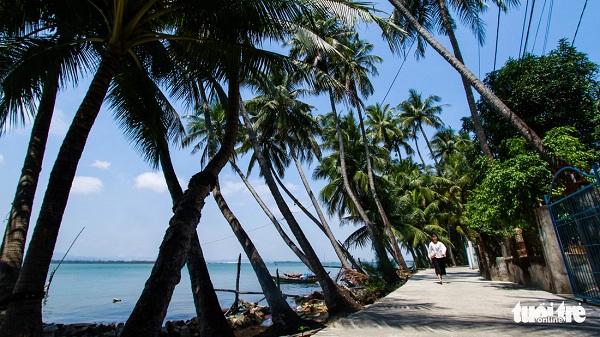 """Con đường rợp bóng dừa trên đảo rất thích hợp để """"sống ảo"""""""